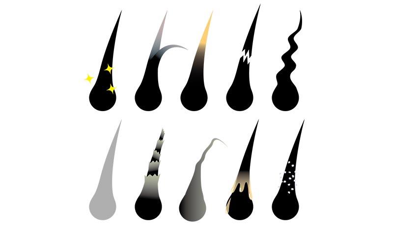 髪の毛の状態10種類