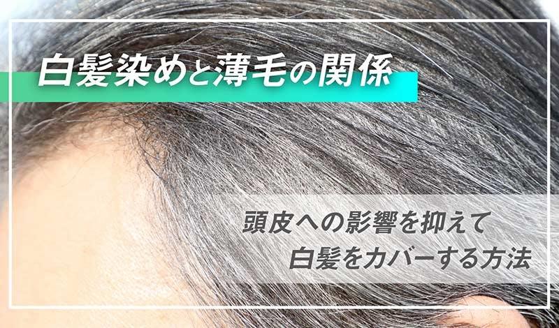白髪染めと薄毛の関係 頭皮への影響を抑えて白髪をカバーする方法